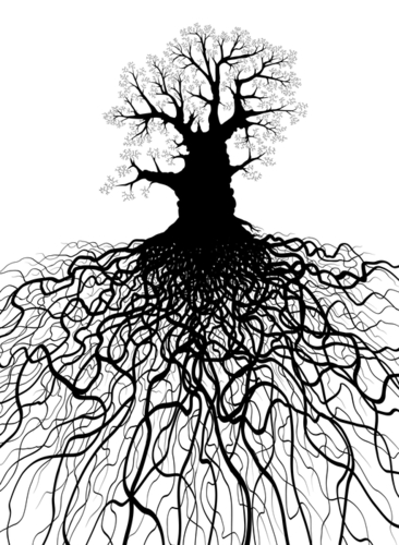 Branches_and_roots_image-large-7543